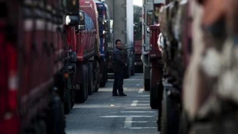 Sector dos transportes diz que a sua sobrevivência está em causa.