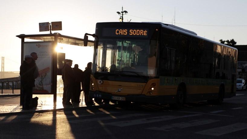 Crianças com passe gratuito em Lisboa a partir de 1 de Fevereiro. Para idosos desconto é de 60%