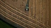 Primeira fábrica de farinha de trigo de Angola quer potenciar agricultura