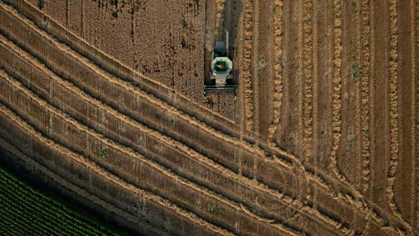 Empreendedores agrícolas já têm guia online