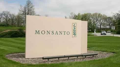 Bayer quer protagonizar maior negócio do ano com a compra da Monsanto