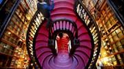 Livraria Lello regista 1 milhão de visitantes em 2016 e quintuplica venda de livros
