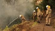 Candidaturas para apoios à destruição de pastagens pelos incêndios de 1 a 9 de Setembro