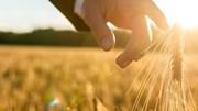 A agricultura conta com uma nova geração