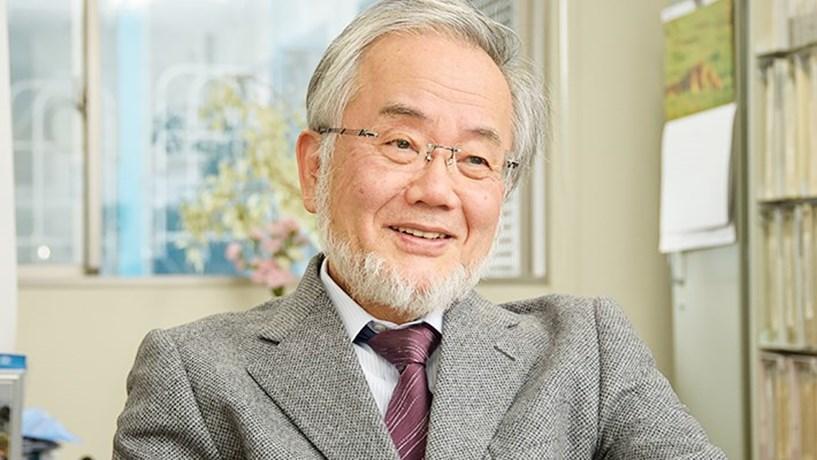 Nobel da Medicina atribuído ao japonês Yoshinori Ohsumi