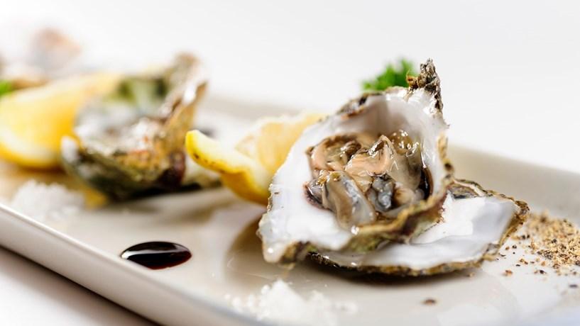 IVA das ostras baixa para 6%