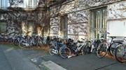 Governo avança com plano nacional para a utilização da bicicleta
