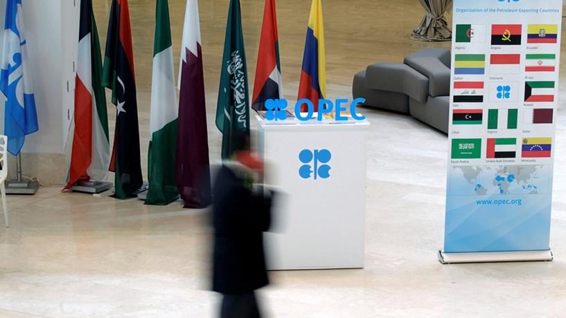 Produção da OPEP caiu em 310 mil barris por dia em Dezembro