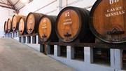 Produção de vinho em Portugal caiu