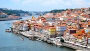 Cientistas do Porto inventam máquina que lava loiça em seis minutos com ultra-sons