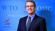 Director-geral da OMC vai estar no Conselho de Estado desta sexta-feira