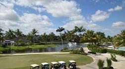 Mário Ferreira procura 100 jovens para trabalhar em campos de golfe em Palm Beach