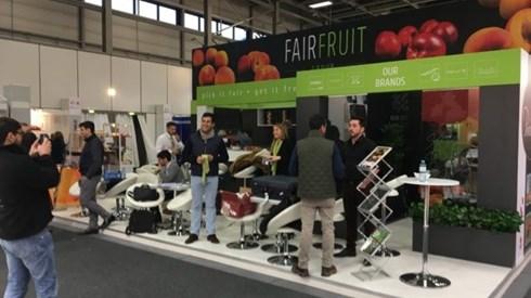 FairFruit investe 10 milhões em Beja