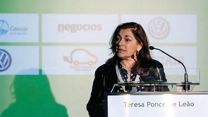 Teresa Ponce de Leão, da APVE