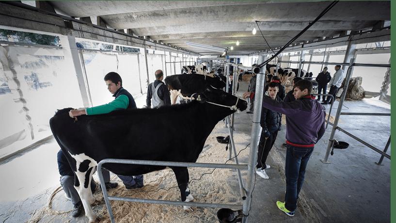 O futuro da Política Agrícola Comum