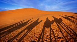 Marrocos, a sul: o encanto dos oásis no deserto
