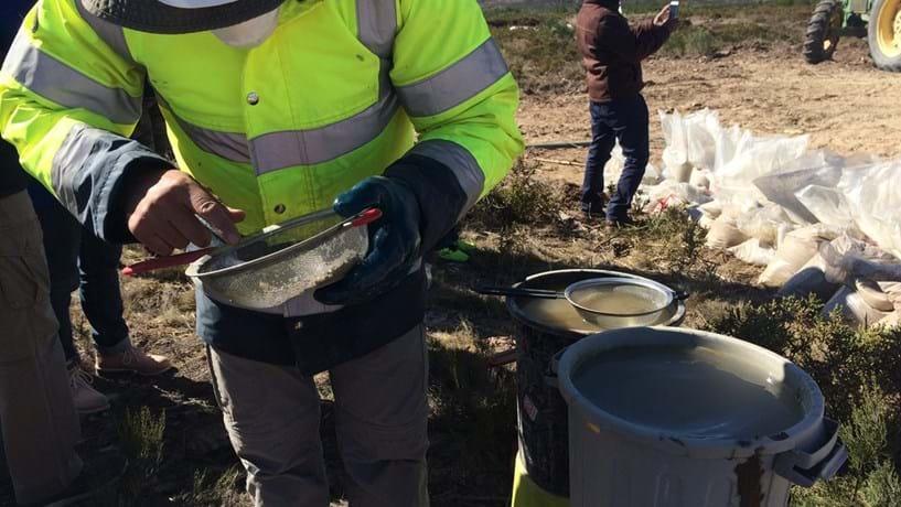 Gestora da bolsa australiana desconhece irregularidades na actividade da Novo Lítio