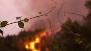 A pé, de carro ou em casa: saiba o que fazer perante um incêndio