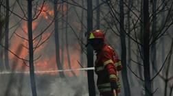 O que aconteceu com a rede SIRESP no incêndio de Pedrógão?