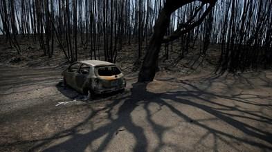 Falhas no SIRESP deixaram vítimas sozinhas e sem ajuda, revela caixa negra da protecção civil