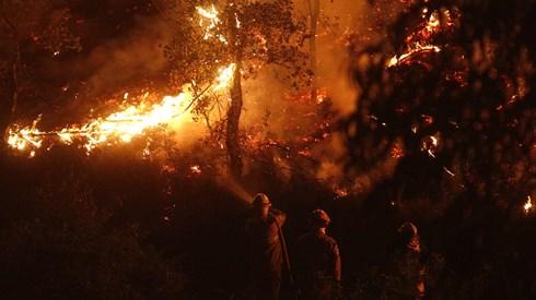 Aldeias evacuadas em Mação. Chamas lavram sem controlo