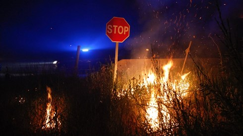 Electricidade já voltou a Pedrógão Grande depois do fogo