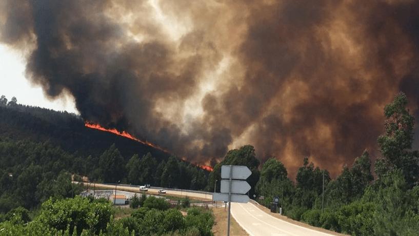 Mais de 1.600 homens, 495 veículos e 15 meios aéreos combatem fogos principais