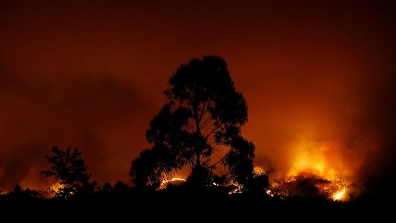Incêndio de Pedrógão dobrou a área ardida desde o início do ano