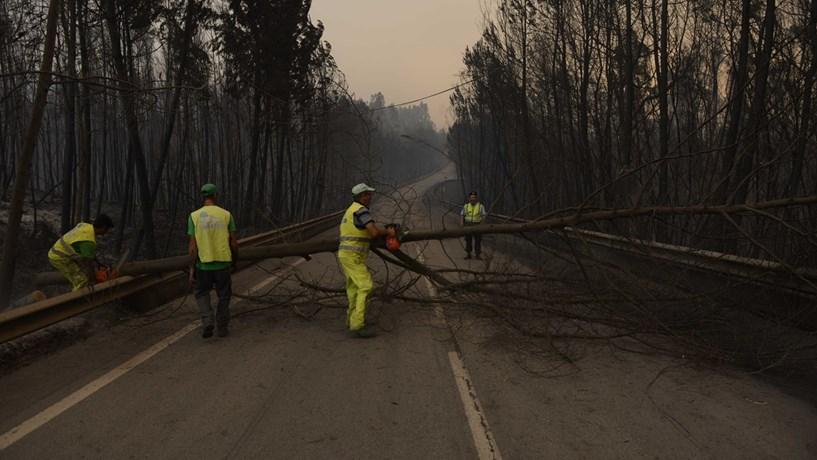 Incêndio alastrou para a Sertã, entrando no distrito de Castelo Branco