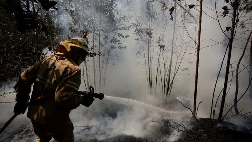 Governo estima prejuízos de 500 milhões de euros nos incêndios