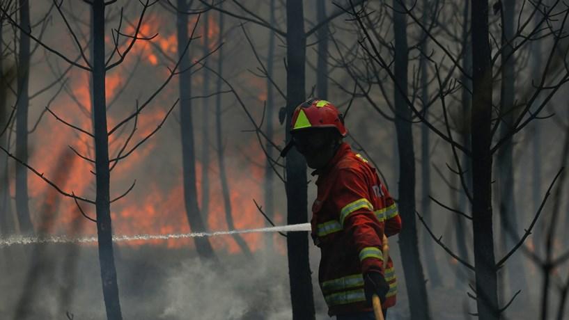 O dia em que o fogo destruiu o trabalho da vida inteira de Tomás Alves