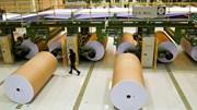 Indústria critica novas cedências do Governo no eucalipto