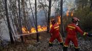 Grande fogo na Sertã, Proença-a-Nova e Mação dominado
