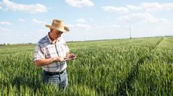 WiFi4EU: a internet em força na Europa rural