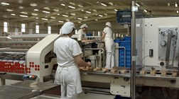 Trabalhadores em lay-off vão poder exercer atividade em alguns setores